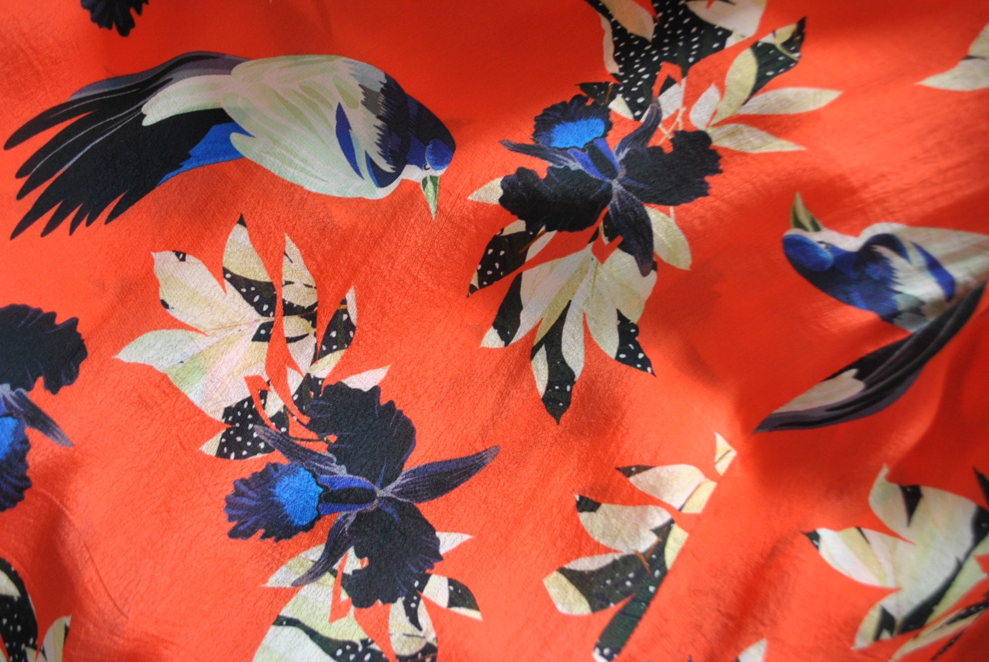 Pyrus-bird-print-dress